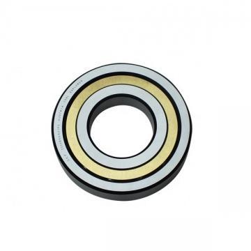 EBC 6007 2RS  Single Row Ball Bearings
