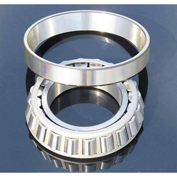 Full Complement Cylindrical Roller Bearing #1 image